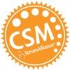 ScrumMaster Logo Seal